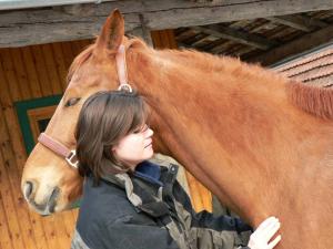 Pferde-Physiotherapie führt zur Entspannung des Pferdes