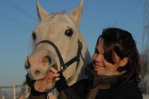Lockerung des Kiefers in der Pferdephysiotherapie